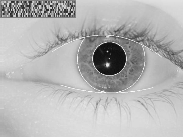 iris scan sample 600x450 1