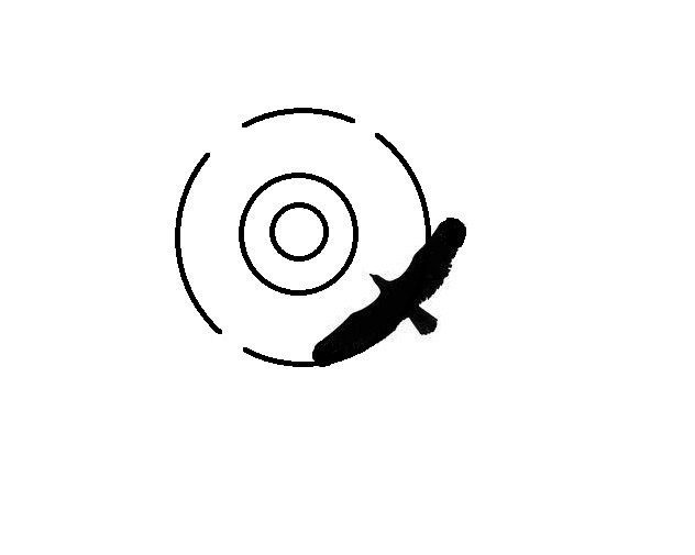 HawkScan 1 logo