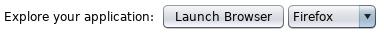 zap hud 10 ZAP Launch browser