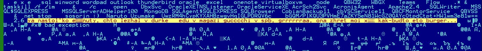 JSworm malware 13