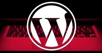 WordPress Brute Force 1