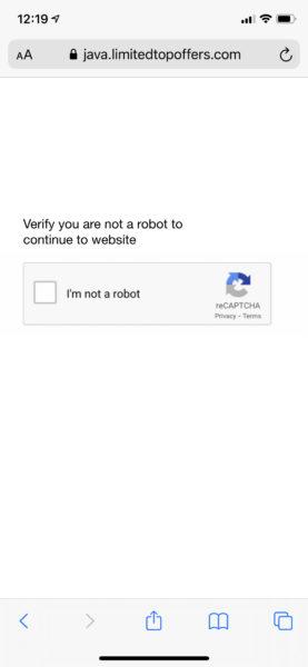 Fake captcha web page