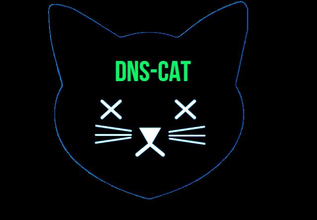 dns black cat 1 DNS Cat